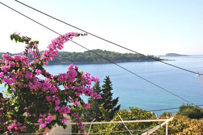 6 Bedroom Villa in Cavtat nr Dubrovnik, Sleeps 12-15